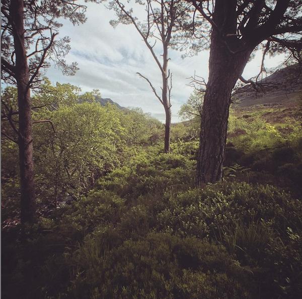 Torridon in the Scottish Highlands