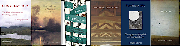 Collection of books by David Whyte...